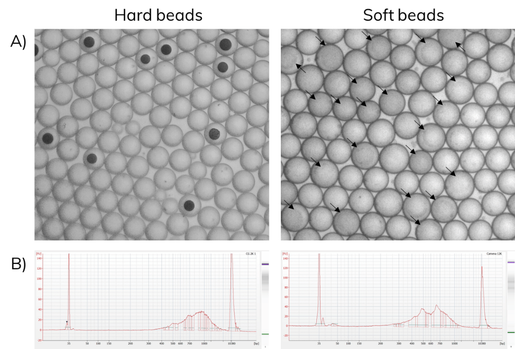Figure 6: Row A shows hard and soft beads (Droplets containing beads are marked with arrows) after encapsulation with corresponding bioanalyzer traces after Drop-seq library preparation (B).